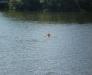 Юлькины купания