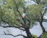 Юля на дереве на фоне Волго
