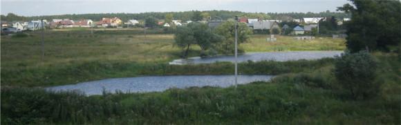Подмосковье, Чепелево - 02.08.2008